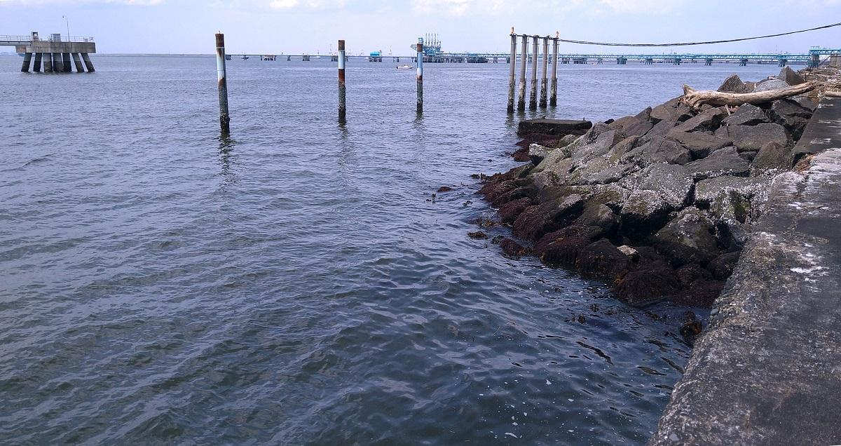 満潮と干潮のどっちが釣れるのか考えたことありますか?